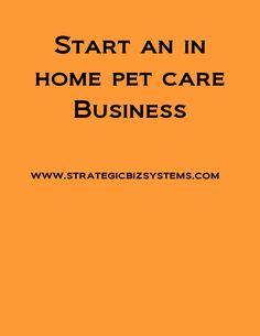 Entrepreneur Resume Example - Business Owner, Founder